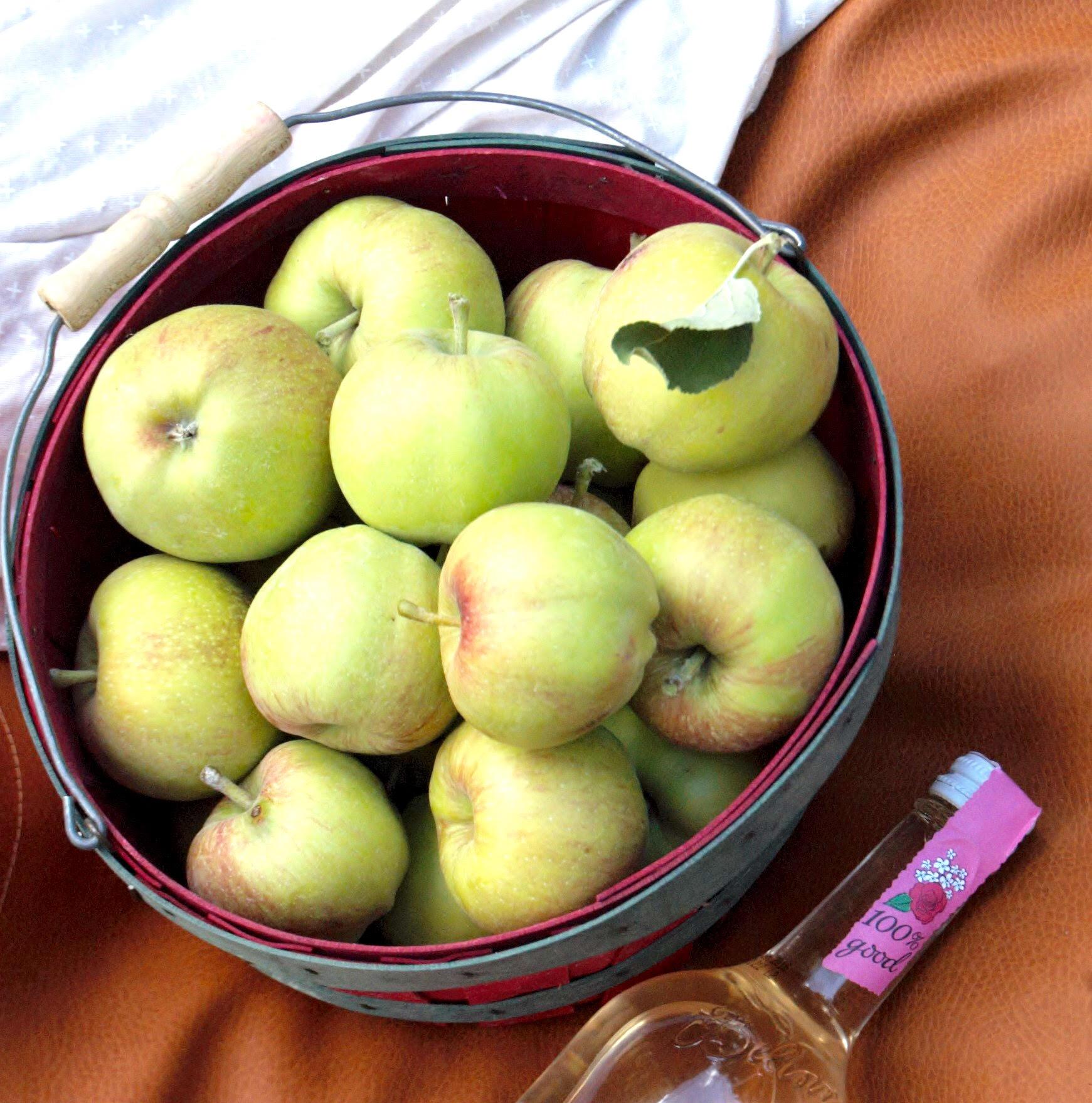 basket o apples.jpg